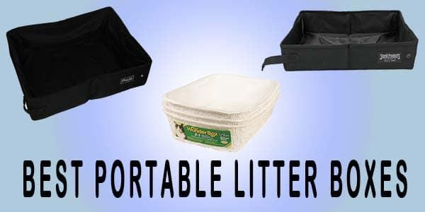best portable litter box