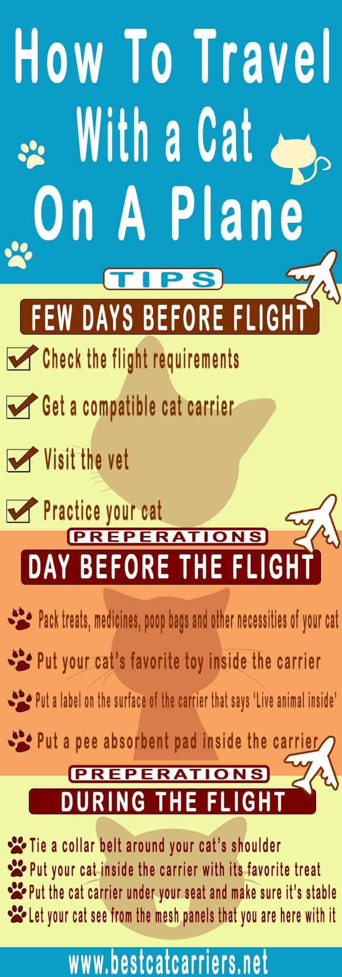 how to travel with a cat on a plane infograph