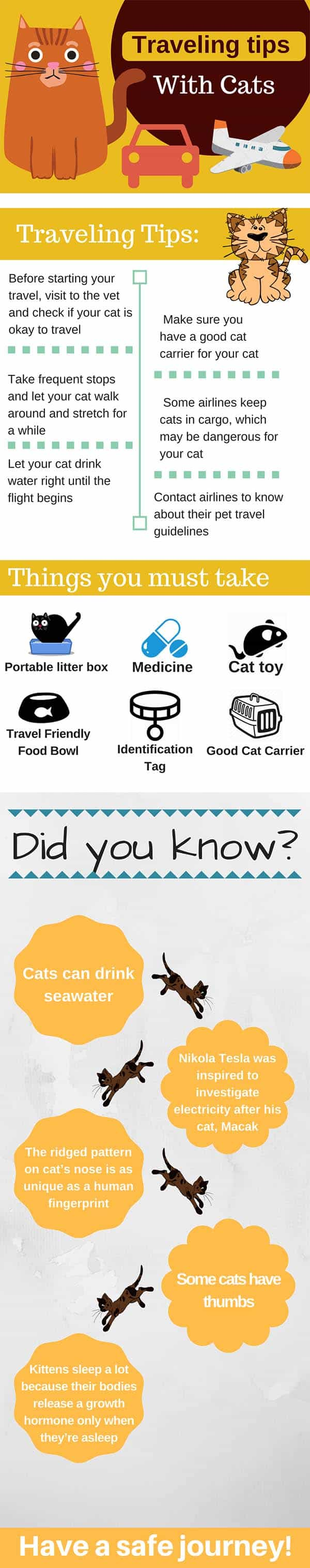 how to travel with a cat infographic