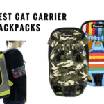 Best Cat Carrier Backpacks 2018 (Checked and Reviewed)