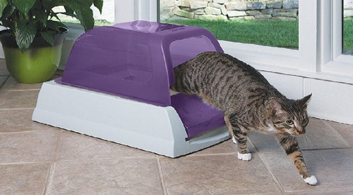 self cleaning travel litter box