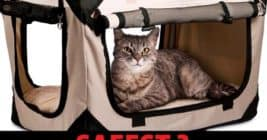 safest cat carrier