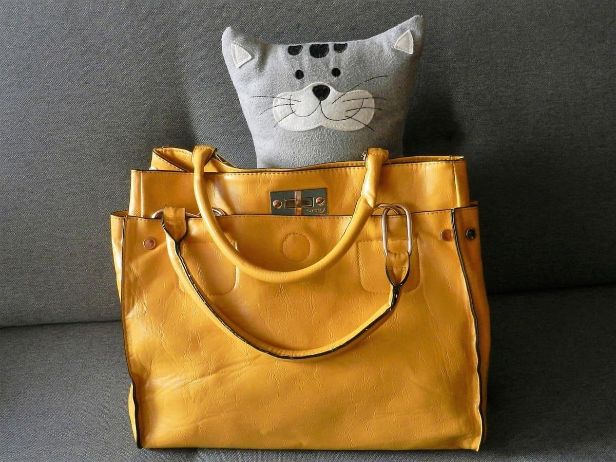 best-pet-carrier-purses